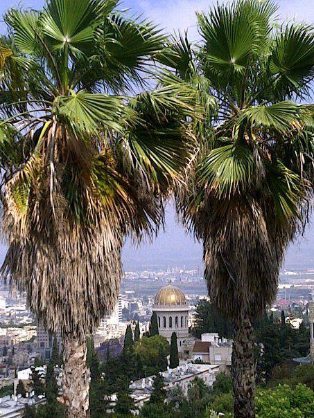 Israel IV