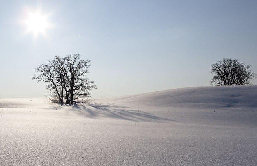WinterV