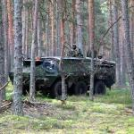 Saber Strike 2013 exercise in Estonia