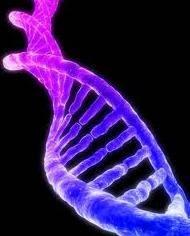 molekulaarbioloogia