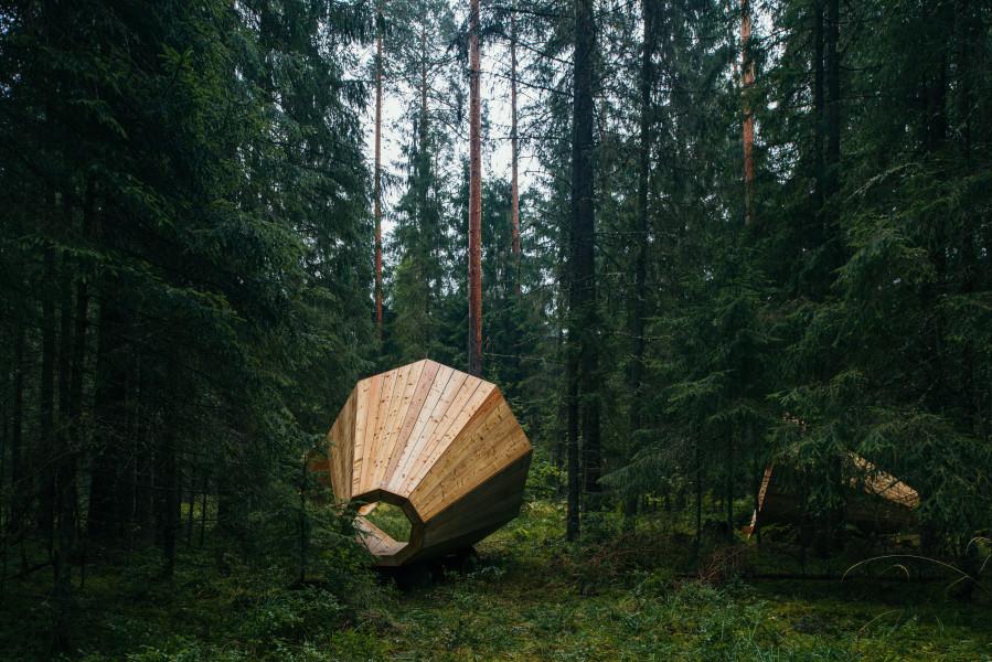 Фото студенты в лесу