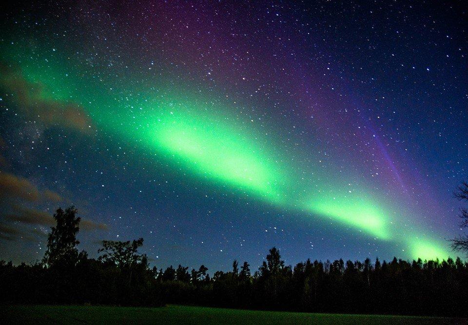 Northern Lights - Jana Kuusemäe