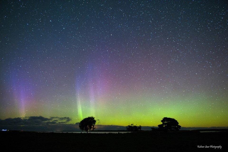 Northern Lights - Kalmer Saar