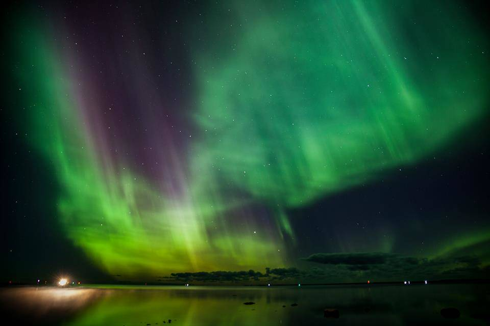 Northern lights - Kauro Kuik