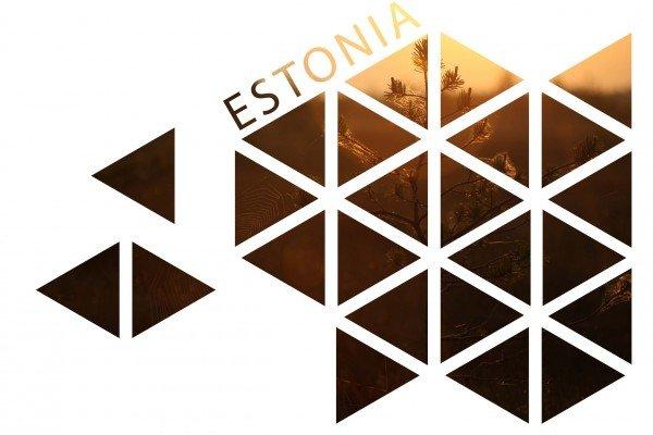 Estonia logo - Tonn Tuvikene