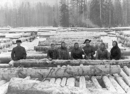 Deported Ukrainians and Estonians working in a transit log warehouse, Kirov Oblast, Nagorski Region