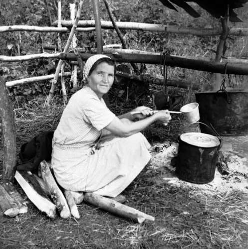 Lee-Ella Kuusik, deported in 1941, in Kirov Oblast, Borovskoi collective farm, preparing soup during haymaking, 1952.