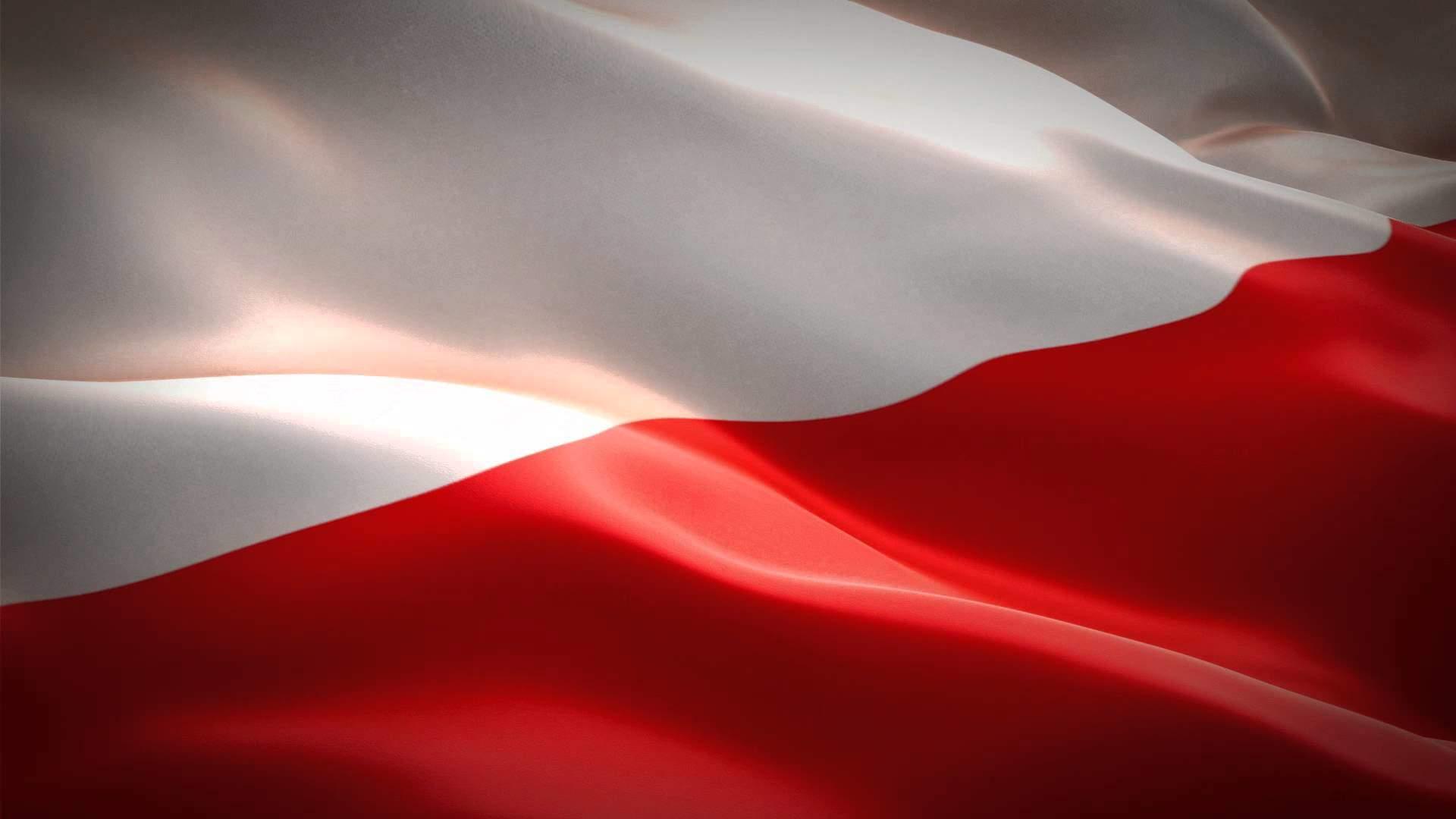 "Poland's ""Conservative Revolution"": a dilemma for the ..."