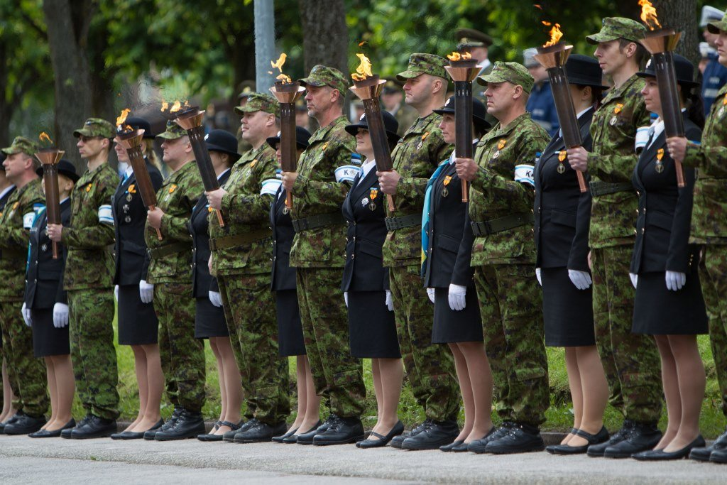 Victory Day parade in 2014 - Estonian Defence Forces