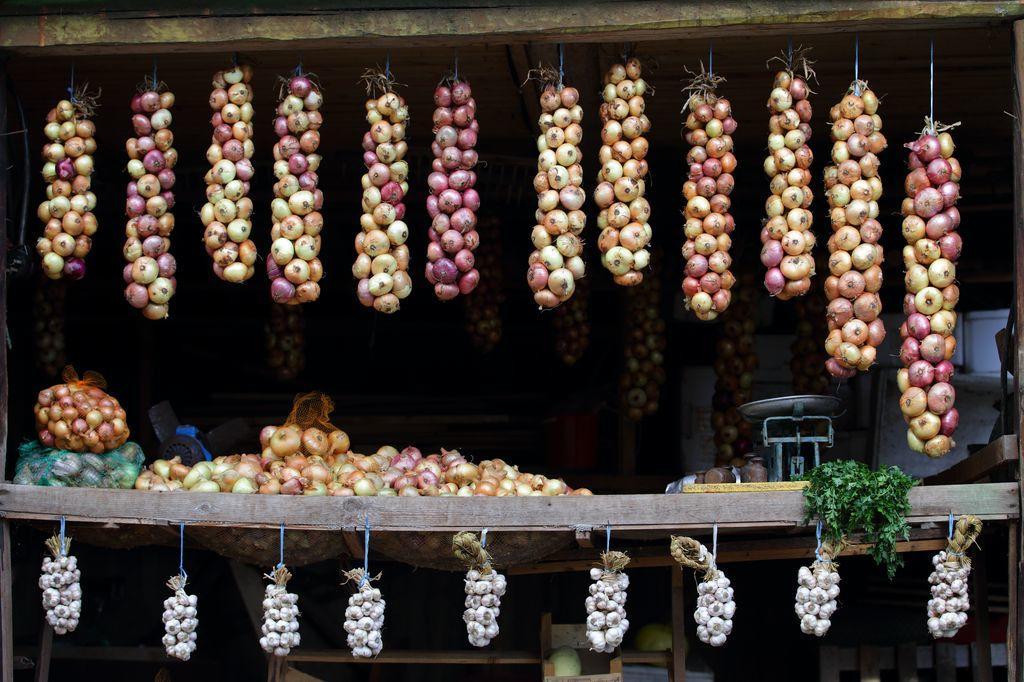 The Onion Road - Remo Savisaar