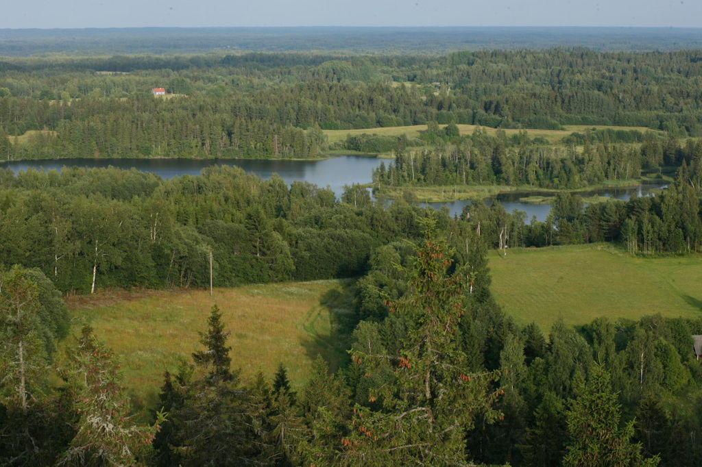 View from the Suur Munamägi - Liina Guiter (EAS)
