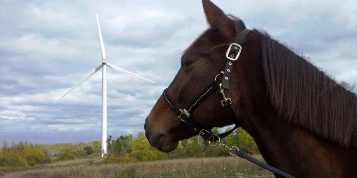 wind-energy-estonian-wind-energy-association-i