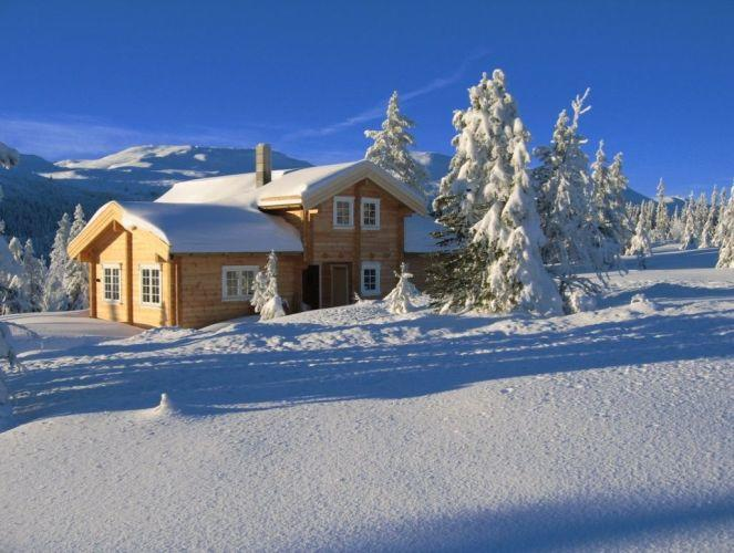 Estonia is Europe's largest exporter of wooden houses
