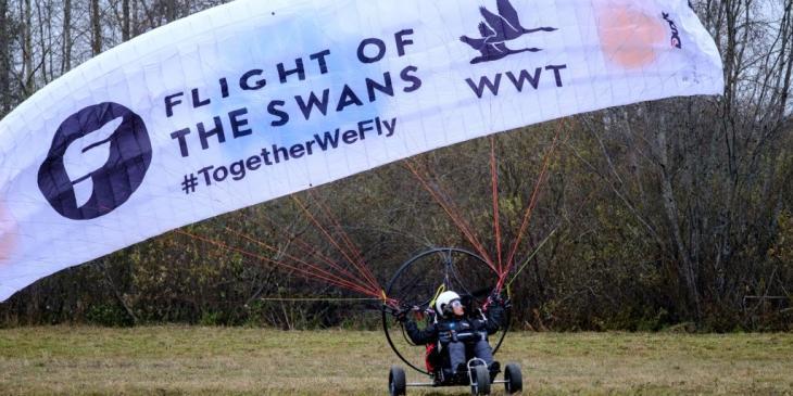 flight-of-the-swans-1