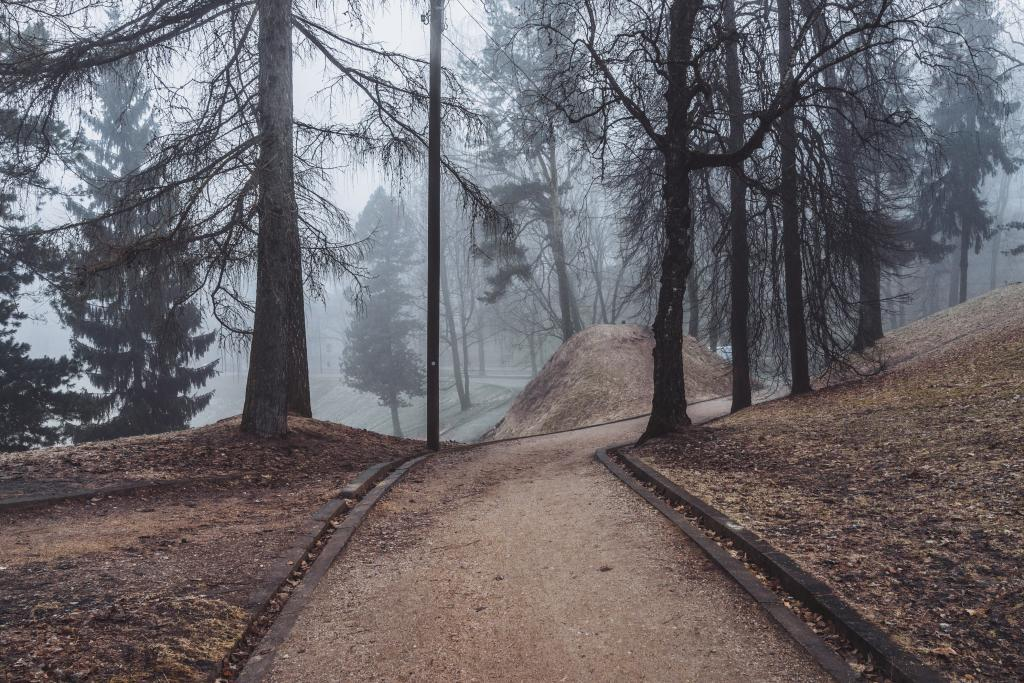 Kassitoome, Tartu. May way home from train station goes through a fairy tale place. It's sensitive to weather just like forest trails — each variation of each season evokes a completely new landscape here. On misty mornings the town disappears from around this forest completely.