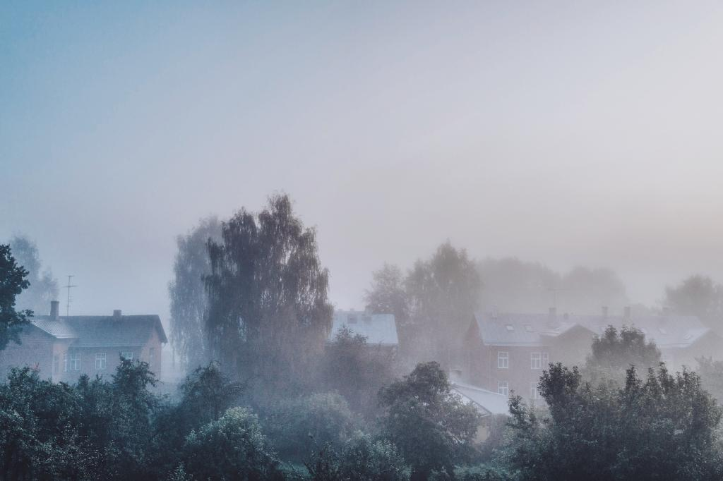Supilinn, Tartu. The ever-changing view from my kitchen window. When autumn is approaching, mornings become slower and damper. Yet, this mist has a warm undercurrent, the knowledge that by the end of your morning coffee the sun is going to disperse those low-lying clouds.