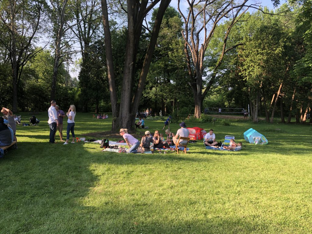 Many of the partygoers brought their own picnic blankets. Photo by Sten Hankewitz.